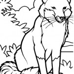 Fuchs 1