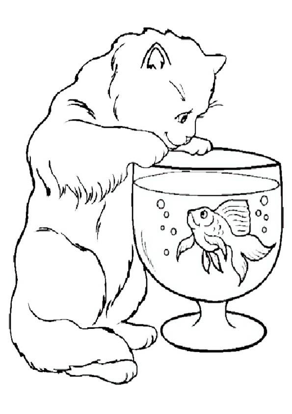 Katze mit einem Fishbowl