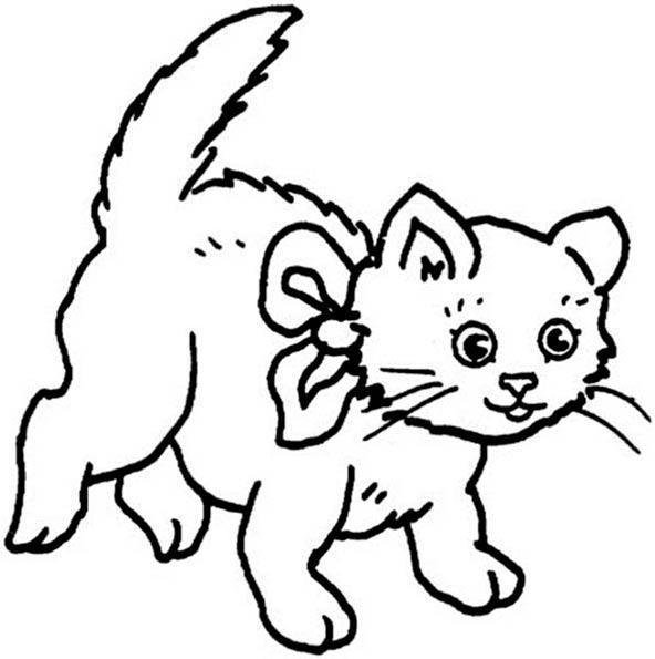 Katze mit einer Schleife