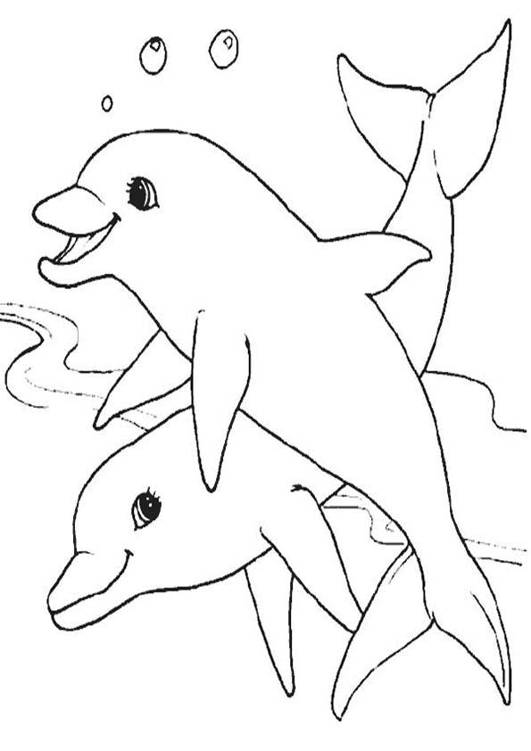 zwei Delphine zum malen