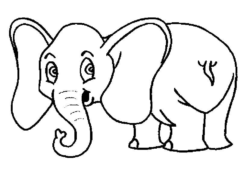 elefanten zum malen 1