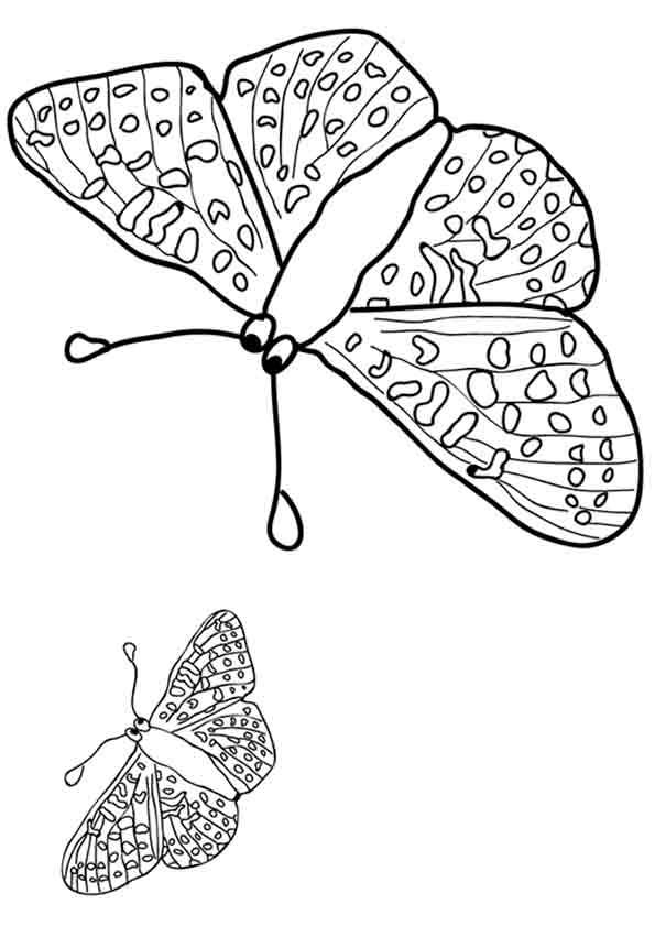 Schmetterling 6 zum malen
