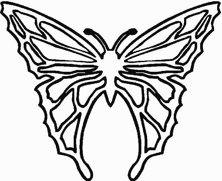 Schmetterling 9 zum malen