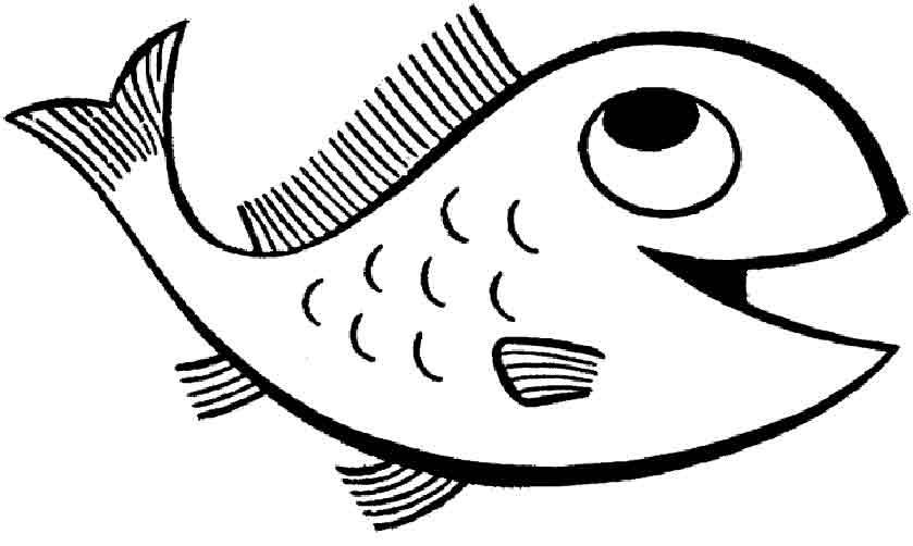 Wassertiere 9