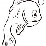 Fische 12
