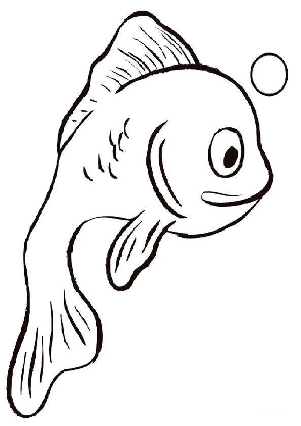 Wassertiere 12
