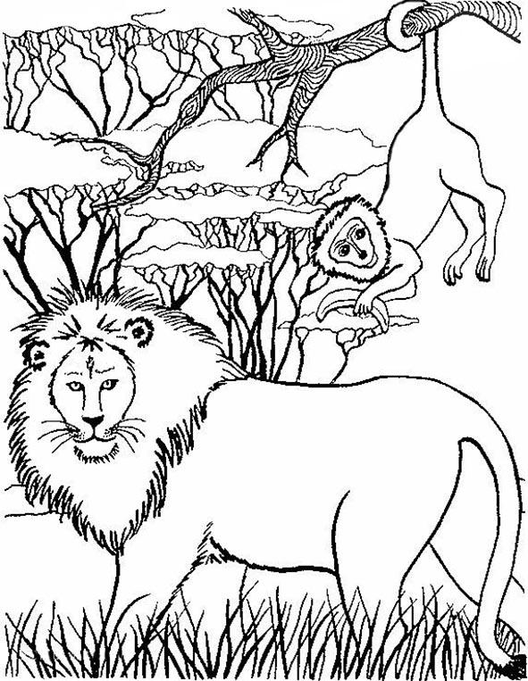 Löwe und Affe