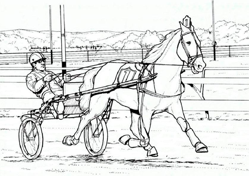 Pferde zum ausmalen 9